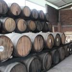 Visita a la destilería Aconte Rum.
