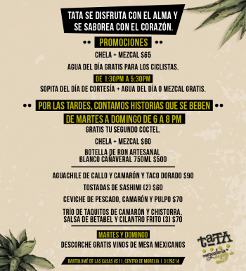 TATA_Promociones_280716 (1)